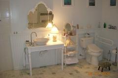 Accessible bathroom, bidet, fold down grab bar