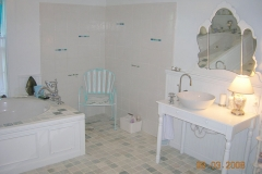 Accessible bathroom, curbless shower, wheelchair accessible sink